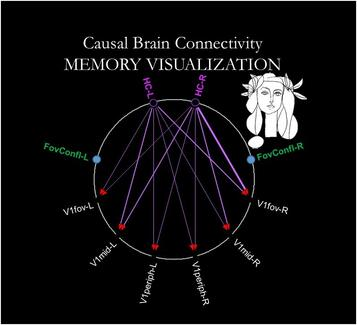 Causal Brain Connectivity between Hippocampus and Early Visual Subareas in Memory-Visualization