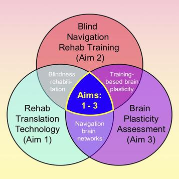 Venn diagram of the multidisciplinary approach to this clinical trial on blind navigation.