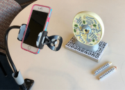 smartphone camera aimed at a model of a biological cell with two styluses nearby
